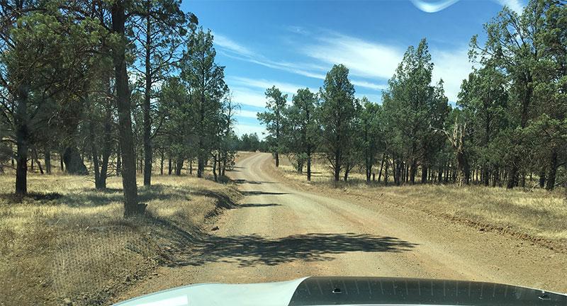 Sacred Canyon drive