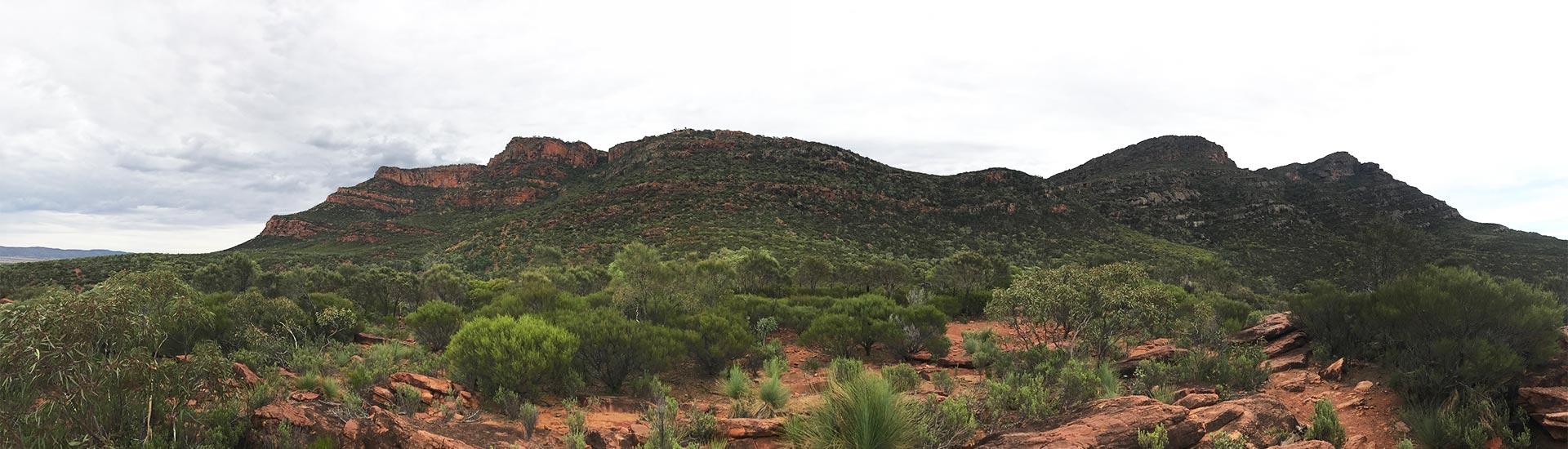 Wilpena Pound to Arkaroo Rock ⋆ Hatch a Holiday