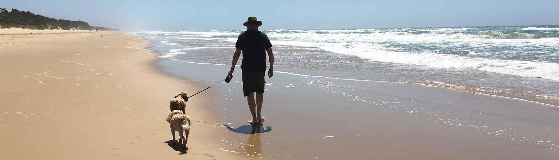 Woodside Beach Dog Friendly